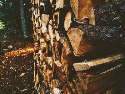 lumber exporter.jpg